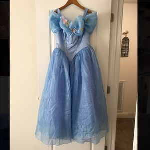 Cinderella Original Halloween Costume